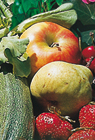 Vitaminreiches Obst & Gemüse